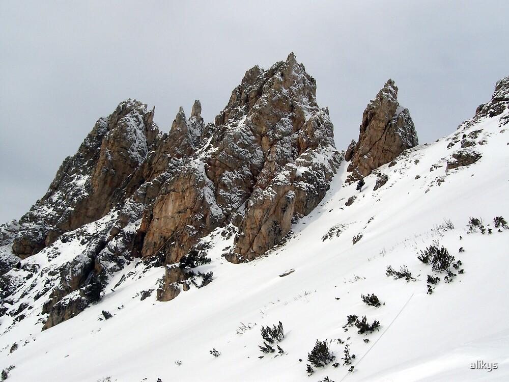 Snowy Edge by alikys