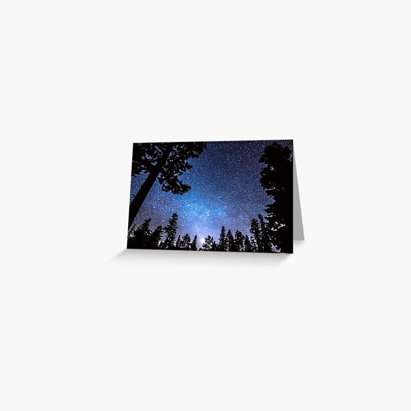 Forest Star Gazing An Astronomy Delight Greeting Card