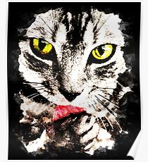 gxp cat licks perfectly Poster