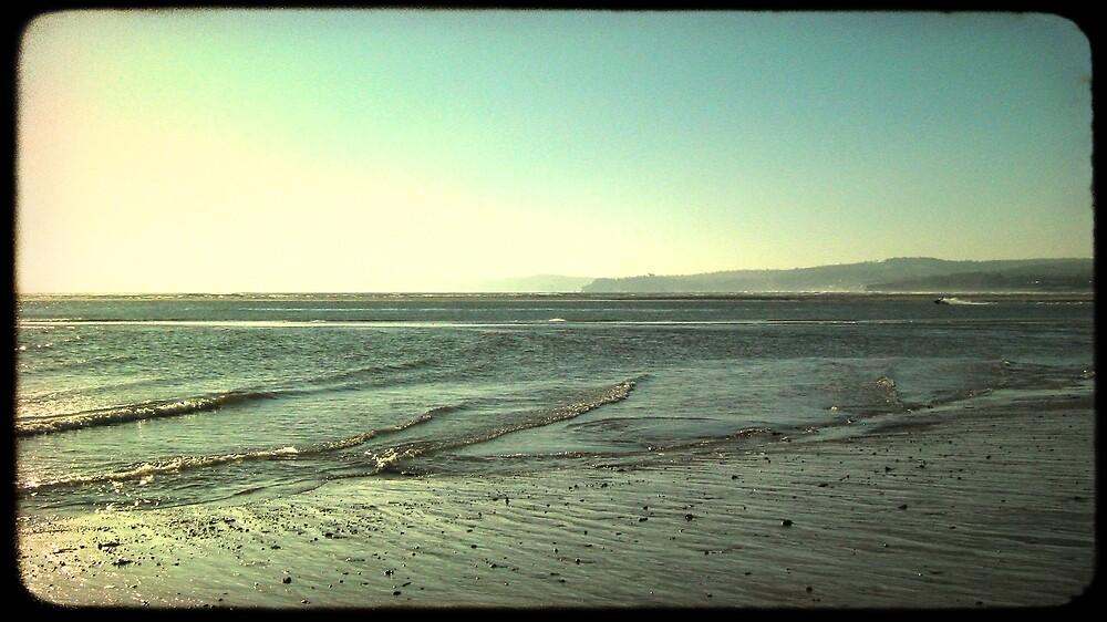 The Beach by Sam Mortimer