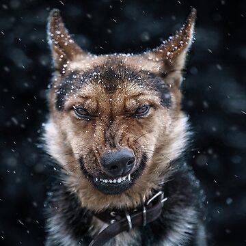 Snow doggo by Esculor