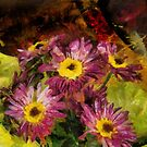 Little Chrysanthemums by Gilberte