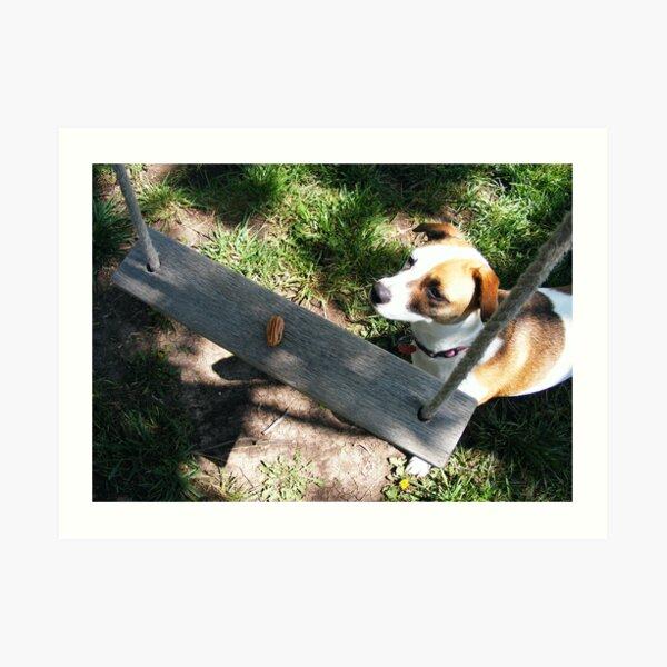 doggie anticipation Art Print