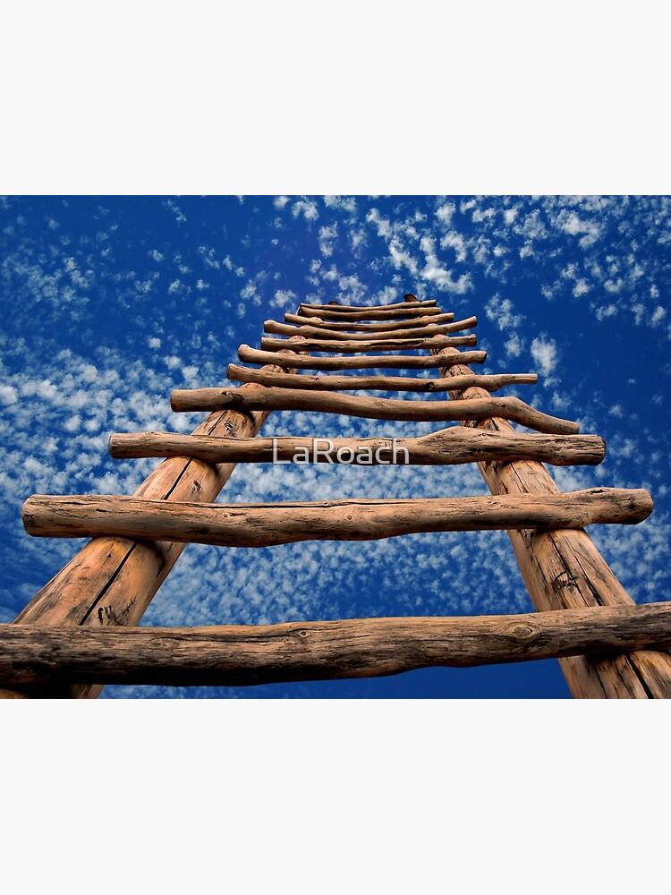 Kiva Ladder by LaRoach