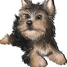 Alert Young Yorkshire Terrier Puppy by Edith Snow