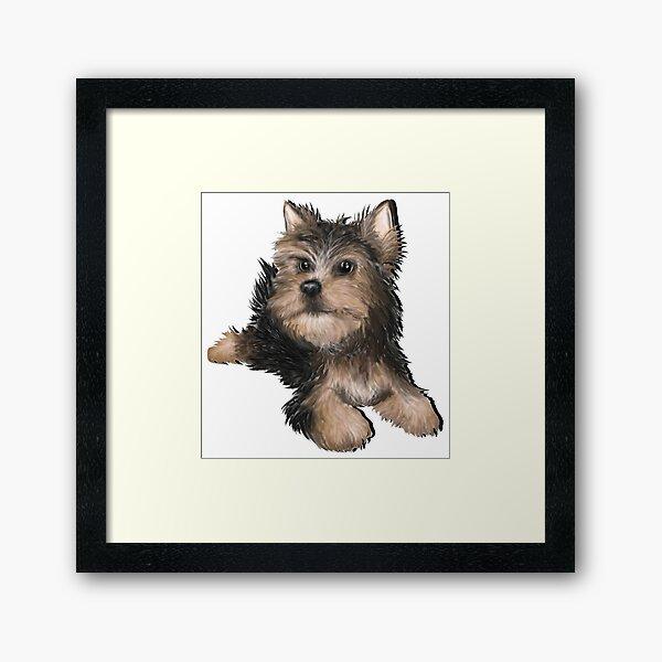 Alert Young Yorkshire Terrier Puppy Framed Art Print