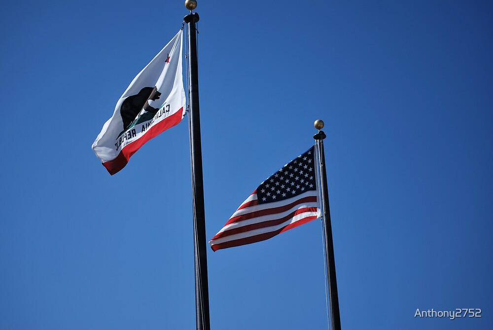 My States Flag! by Anthony2752