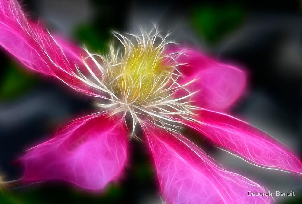 Clematis In Pink by Deborah  Benoit
