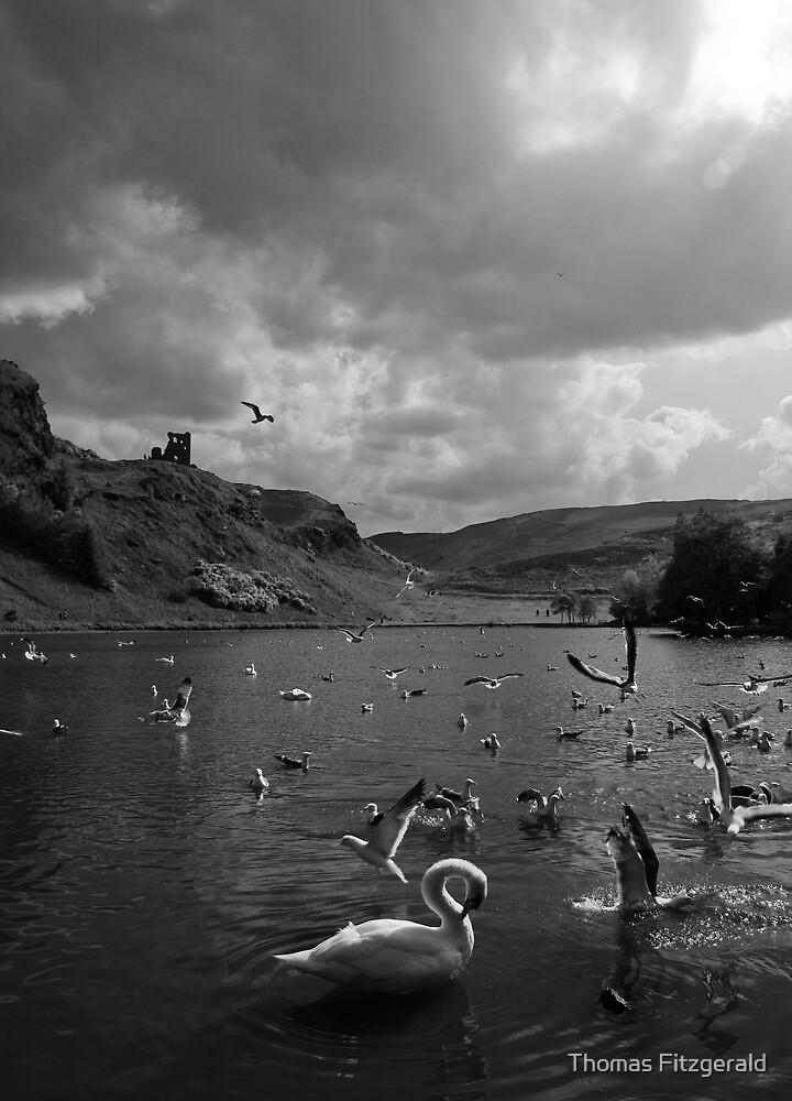 St. Margaret's Loch by Thomas Fitzgerald