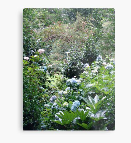 Hydrangea path - June's Garden Metal Print