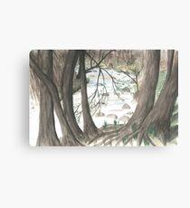 Hidden Stream Canvas Print