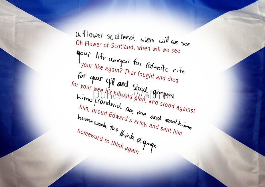 Flower of Scotland by Duncan Waldron