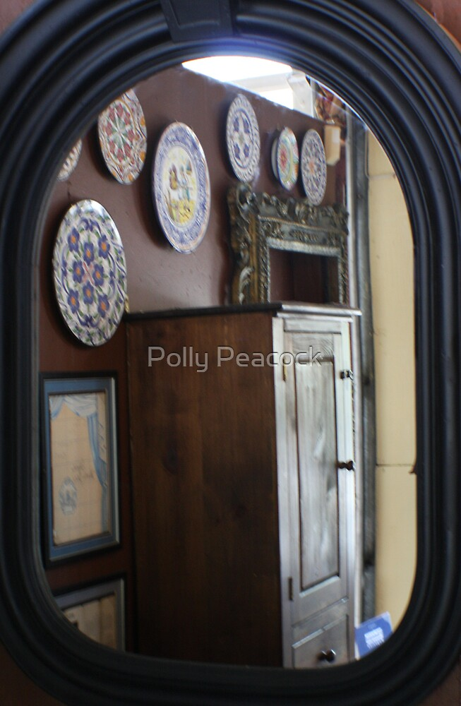 Catalina's Mirror by Polly Peacock