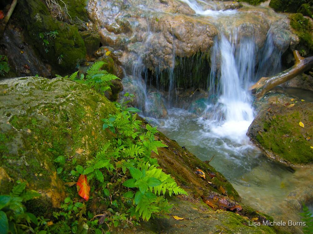 Cascade Waterfalls by Lisa Michele Burns