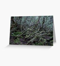 Under the Gondwana Rainforest Canopy  Greeting Card