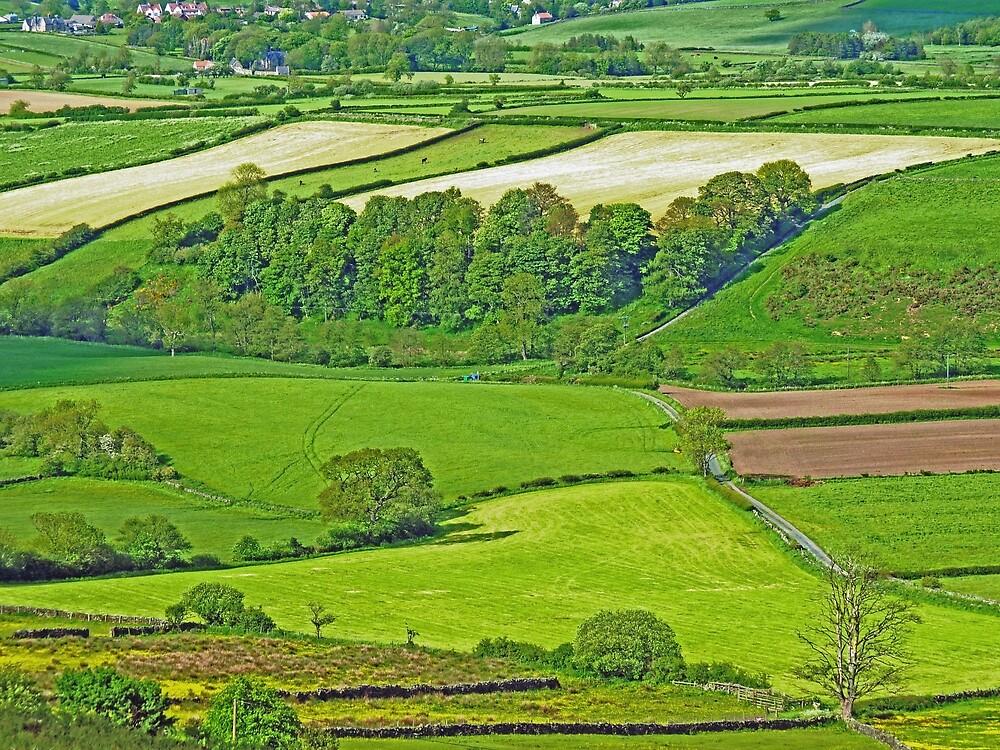 North Yorkshire Moors by Graham Geldard