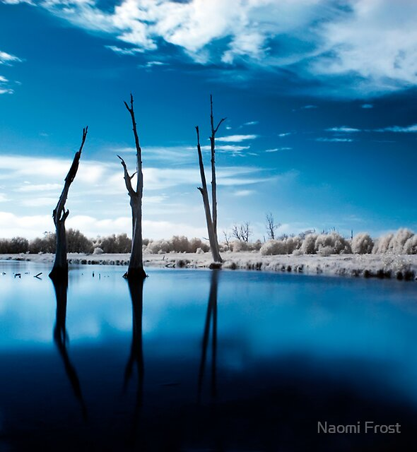 Edge Of The World by Naomi Frost