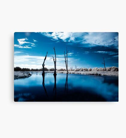 Edge Of The World Canvas Print