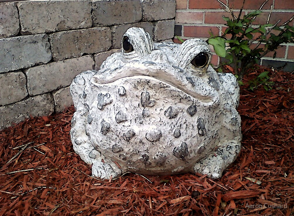 In Mothers Garden the Toad Smiles by Aaron Cushard