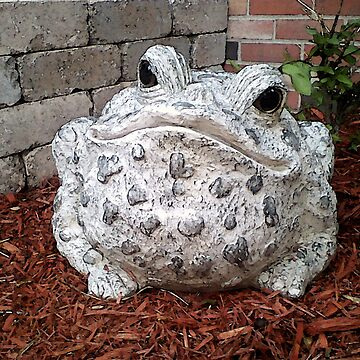 In Mothers Garden the Toad Smiles by Tr1G3rX1