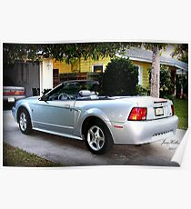 Silver Mustang Poster