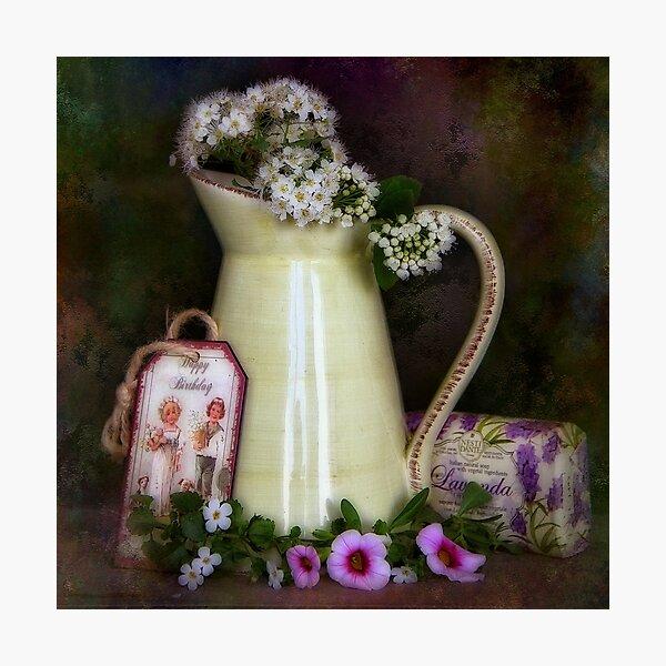 Lavendel Photographic Print