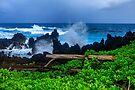 Rocky Coast of the Big Island by photosbyflood