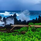 Rocky Coast of the Big Island by photosbyflood