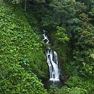 Hawaii Nanue Falls by photosbyflood