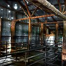 In the Sheds # 3 by GailD