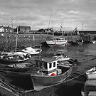 Low Tide in the Harbour by slugman