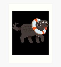 Big And Cute Newfoundland  Art Print