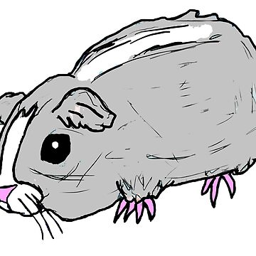 Guinea Pig by kassidycoleman