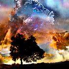 Trees That Star Gaze by linaji