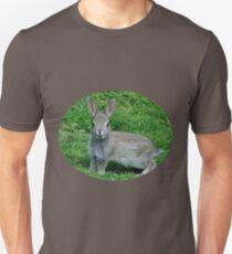 Hello Cutie Tee - 01 Unisex T-Shirt