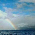 Rain and Rainbows  by WhiteDove Studio kj gordon