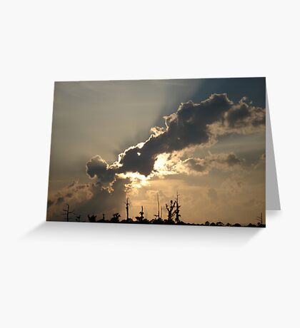 Sunset Over Swamp, May 26, 2009 Greeting Card