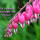 My Heart Belongs to You by Cheri Perry