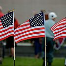 Broad Stripes and Bright Stars by dmvphotos
