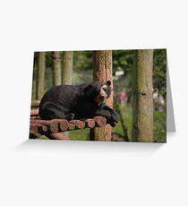 The Spectacled Bear Grußkarte