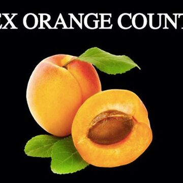 apricot: rex orange county by uncomfortable