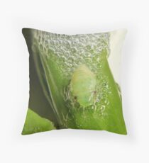 Frog hopper nymph Throw Pillow