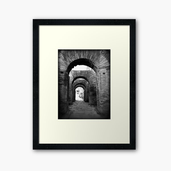 Arches of Palatine Hill, Ancient Rome Framed Art Print