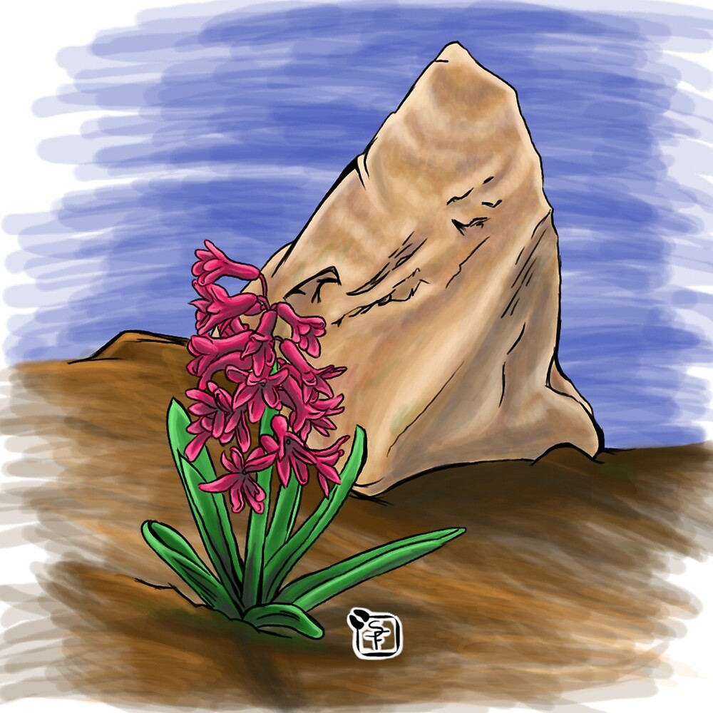 Hyacinth and a rock color by SonneFaunArt