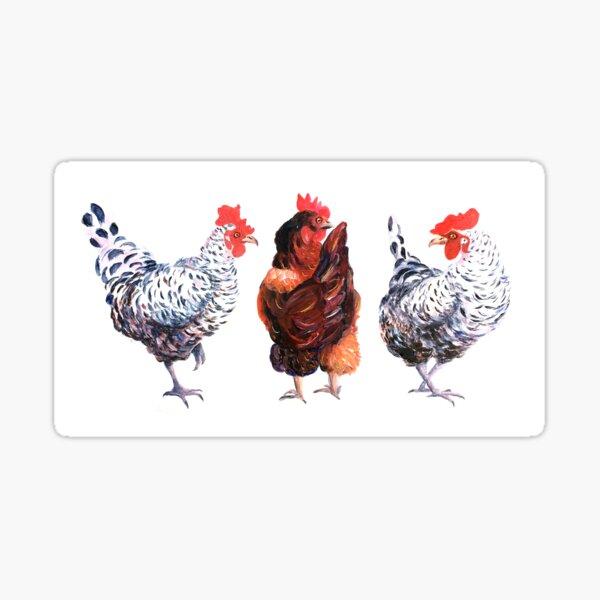 Three Hens Sticker