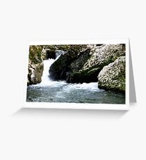 Spilling Greeting Card
