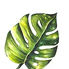 Monstera Leaf Watercolor Painting by Erika Lancaster