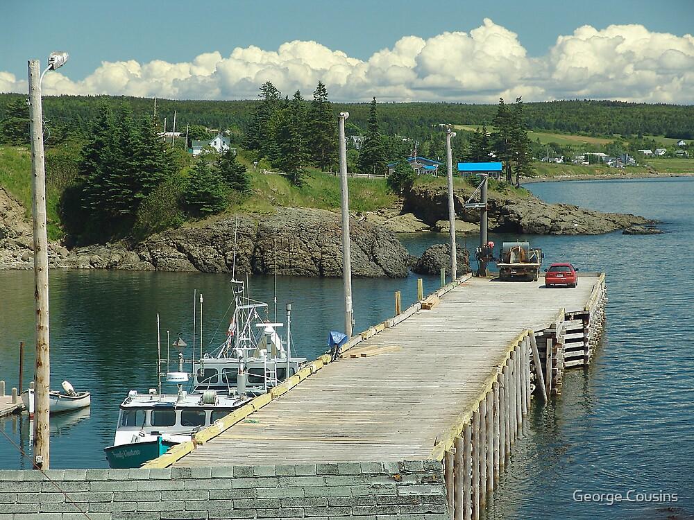 Scott's Bay by George Cousins