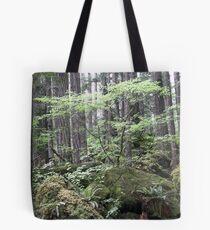 dry stream, Olympic Peninsula, USA Tote Bag