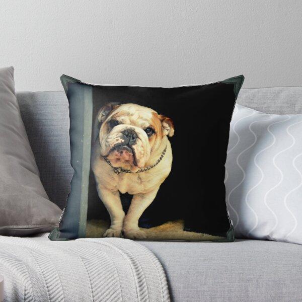 ~Floyd~ Throw Pillow